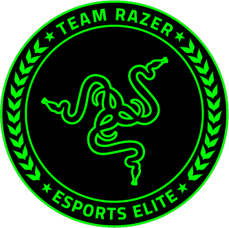 Original razer logo slide 6
